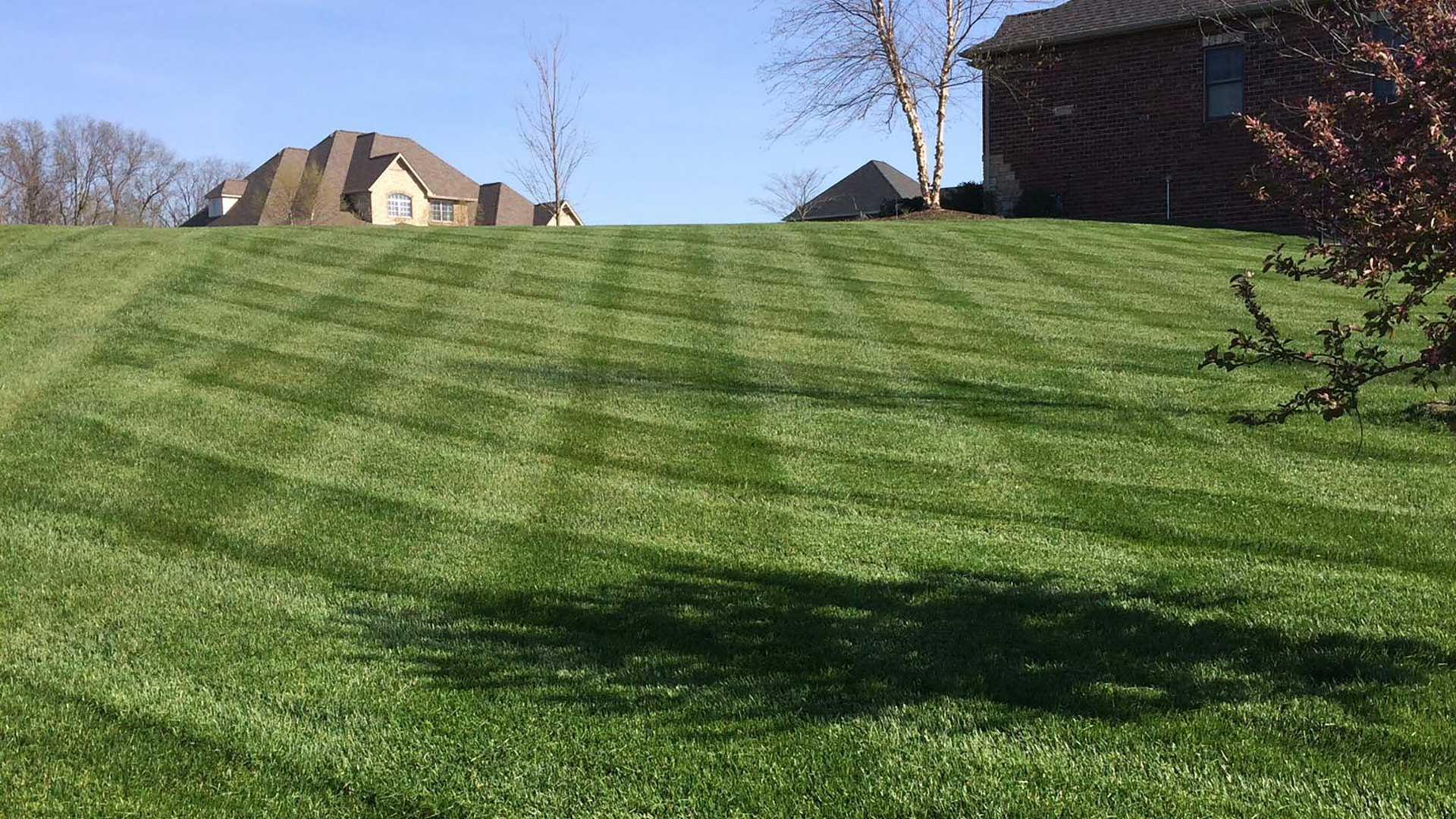 This Columbia, IL yard has been fertilized and received weed control treatments.