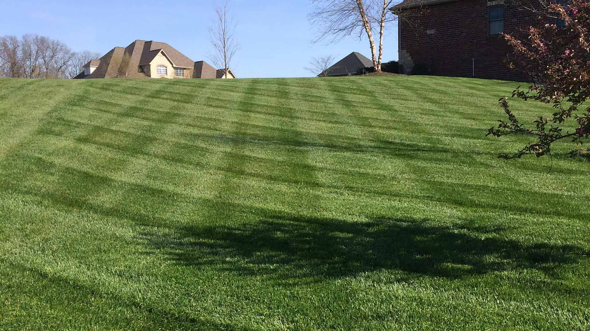 Fertilized and maintained yard in Red Bud, IL.