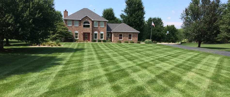 A regularly fertilized lawn in Waterloo, IL.