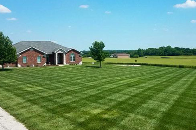 Pricing for lawn fertilization and weed control in the Waterloo, IL area.