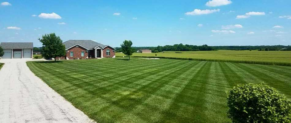 This lawn in Waterloo, IL receives regular lawn maintenance services.